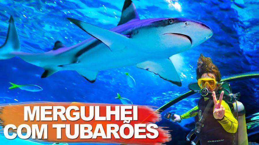 Oceanic Aquarium, o maior aqu�rio do sul do Brasil em Balne�rio Cambori�.